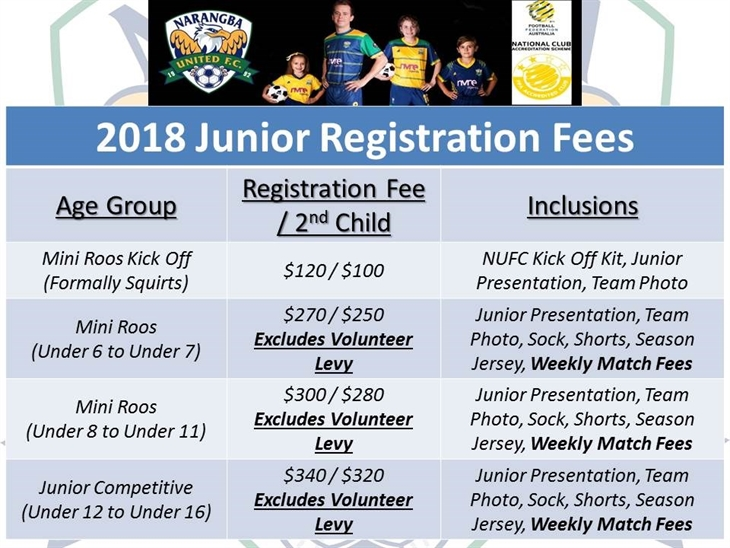 Junior  Rego  Prices V2